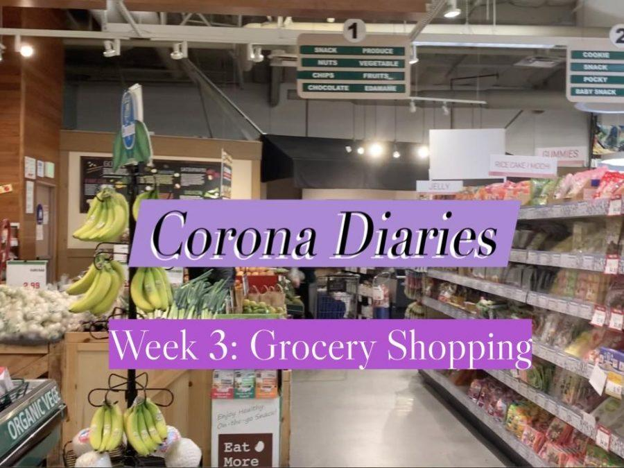Corona Diaries | Week 3: Grocery Shopping