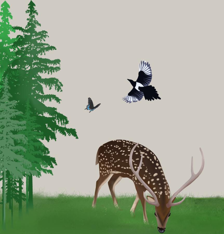 Art by Arati Periyannan.