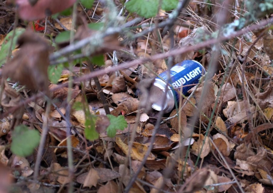 Not so picture perfect. A beer can is tossed in undergrowth at Foothills Park.